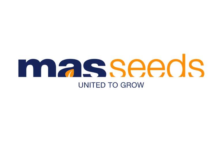 mas-seeds