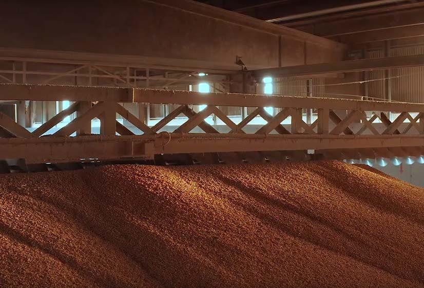 negri-sede-tecnologia-agricoltura